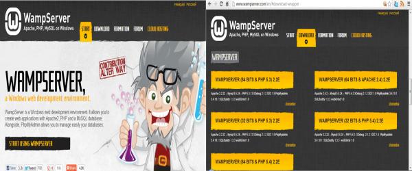 Offline Wamp Server